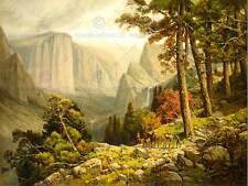 Dipinto paesaggio Yosemite VALLEY CALIFORNIA FORESTA DI MONTAGNA ART PRINT cc1241