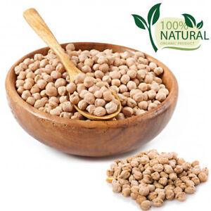 Dried Organic Chickpeas Garbanzo Beans Grain Vegan Holy Land Israel Kosher Peas