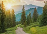 A1| Cool Colorado Mountains Poster Size 60 x 90cm Landscape Poster Gift #16630