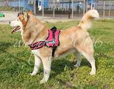 Red Dog arnés S M L Xl Acolchado Extra Grande Grandes Medianos Pequeños Heavy Duty Husky