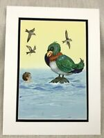 Originale Acquerello Pittura Esotico Uccello Oceano per Bambini Libro Grafica