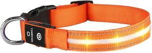 Orange L MASBRILL LED Leuchthalsband  Aufladbar Hundehalsband 100% Wasserdicht