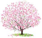 cherrytreedecal