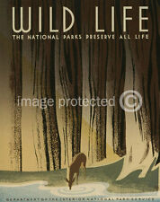 Wild Life National Parks Wpa Art Vintage Travel Poster 18x24