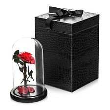 Forever Rose Flower LARGE in Presentation Box Perfect Gift Present for Chrismas