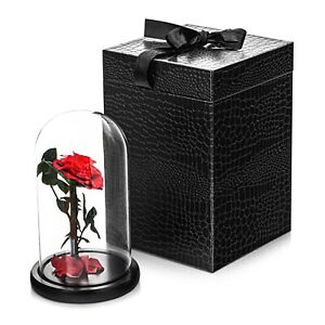 Forever Rose Flower LARGE in Presentation Box Perfect Gift Present for Chrismas