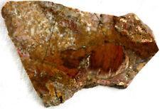 Jasper Slab - Brown - White - 305 Grams - Arizona