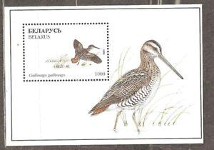 Belarus: mint block, birds, 1996, Mi#Bl 13, MNH.
