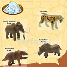 Set of 4 Ice Age Animal 4D 3D Puzzle Realistic Model Kit Educational Toy
