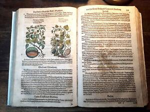 Kräuterbuch, Kreuterbuch, Kreutterbuch, Matthiolli, 1611, altkoloriert, selten