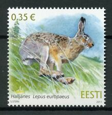 Estonia 2011 MNH European Brown Hare Estonian Fauna 1v Set Wild Animals Stamps