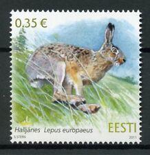 Estonia Fauna Stamps 2011 Mnh European Brown Hare Wild Animals Mammals 1v Set