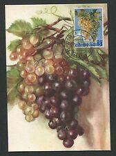 SAN MARINO MK 1961 WEINTRAUBEN TRAUBE WINE GRAPE UVA MAXIMUM CARD MC CM d2471