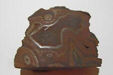 Hematite slice. Cloncurry,, Queensland, Australia.                   S518