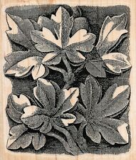 Stamp Cabana ~ FLORAL BACKGROUND ~ Wood Mounted Rubber Stamp Flowers Nature