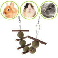 Pet Teeth Grinding Toys Hamster Apple Tree Rabbit Branch Grass Ball Hanging Cage
