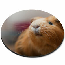 Round Mouse Mat - Cute Ginger Guinea Pig Animals Pets Office Gift #8353