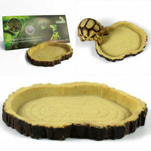 Reptile Resin Feeding Bowl Pet Vivarium Tortoise Gecko Food Water Drinking Dish