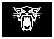 Arctic Cat 5X7 Cat Face Lynx Bearcat Wildcat Zr Xf M Snowmobile Decal Sticker