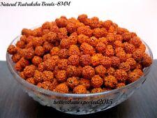 Rudraksha Rudraksh 5 Mukhi Loose 7 MM Beads Yoga Meditation Wholesale Lot 1110