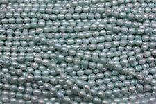 OV303 Zuchtperlen Strang Süßwasser Perlen Schmuck ohne Halskette 8-9mm Oval