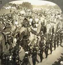 Keystone Stereoview of Elephants on Parade in Jaipur, INDIA from 1930's T600 Set