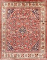 Vintage Traditional Floral Hand-Knotted Wool Area Rug Decorative Carpet 10x13