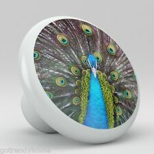 peacock knobs | eBay