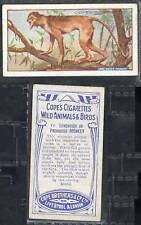 Birds Loose Collectable Cope Cigarette Cards