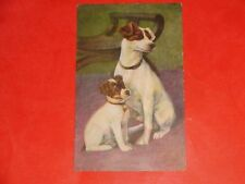 Zn410 Vintage 1907 Postcard Father and Son Jack Russel Terrier Puppy