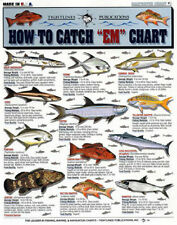"""Lot of 3 - How to Catch """"em"""" - Saltwater - Tightlines #1, #2, & #6."""