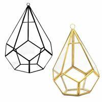 Hanging Glass Terrarium Tears Shape Diamond Geometric Plant Holder Desk Planter