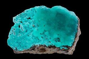 SUPERB BLUE SMITHSONITE ON AURICHALCITE: KELLY MINE, MAGDALENA, NEW MEXICO USA