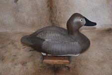 MARV MEYER  - WISCONSIN - CANVASBACK HEN HAND CARVED WOOD DUCK DECOY SIGNED