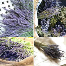 100 x French Natural Dried Lavender Flowers Bouquet Wedding Home Decor or Gift!