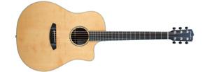 Breedlove Premier Dreadnought Acoustic Guitar