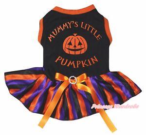 Mummy Pumpkin Halloween Black Top Purple Rainbow Striped Pet Dog Puppy Dress Bow