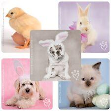 Animal Stickers x 5 - Rachael Hale - Spring Stickers - Chicken Rabbit - Easter