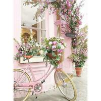 5D DIY Full Drill Diamond Painting Pink Bicycle Cross Stitch Embroidery Kit