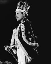 Freddie Mercury Queen 8x10 Photo 004