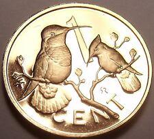 Cameo Proof British Virgin Islands 1974 Cent~94,000 Minted~Hummingbird~Free Ship