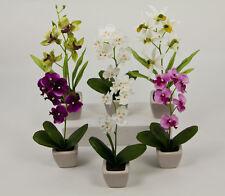 6er Orchideen-Set im weißen Keramiktopf DP Kunstblumen künstliche Blume Orchidee