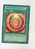 Yu-Gi-Oh - Regno Psychic - 5DS1-FR022 (A5641)