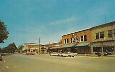 Centreville MI~Main Street~Weber's IGA Grocery Store~Cafe~Pepsi Cap~1950s Cars