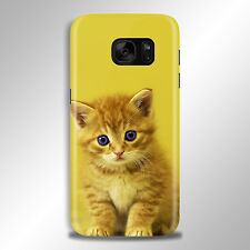 Beautiful Kitten Cat Fluffy Phone Case Cover