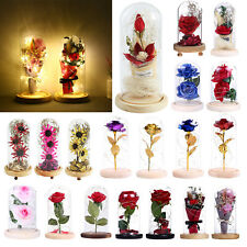 Beauty And The Beast Enchanted Rose in a Glass Dome LED Light Lamp Decor Gift US