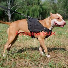 Pitbull Harness Nylon with Handle | Dog Harness for Pit Bull Terrier for Sale