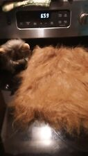 OWNER PET COSTUME COMBO Lion Mane Wig Halloween costume with mane for adult
