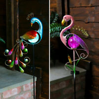 Solar Power Outdoor LED Peacock Flamingo Novelty Path Light | Garden Decoration