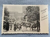 Ready for a ride, Central Park Zoo Vintage Early 1900's Postcard